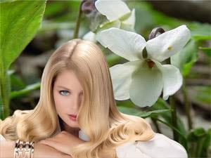 Блондинка и фиалки