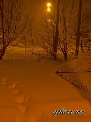 ночной пейзаж-03