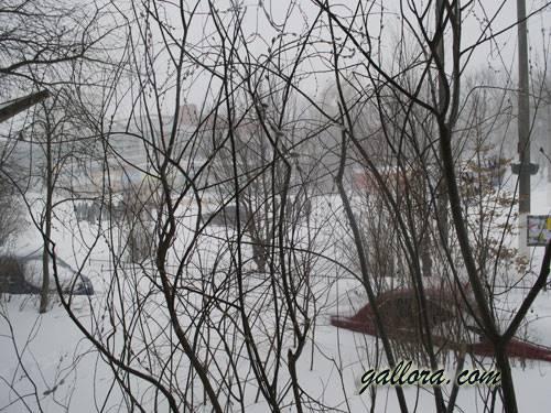 снежное утро-02