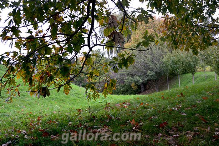 Осенний пейзаж-02