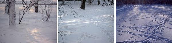 зимние-узоры-01