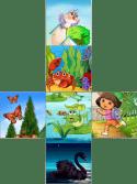 развертка картинок для кубиков
